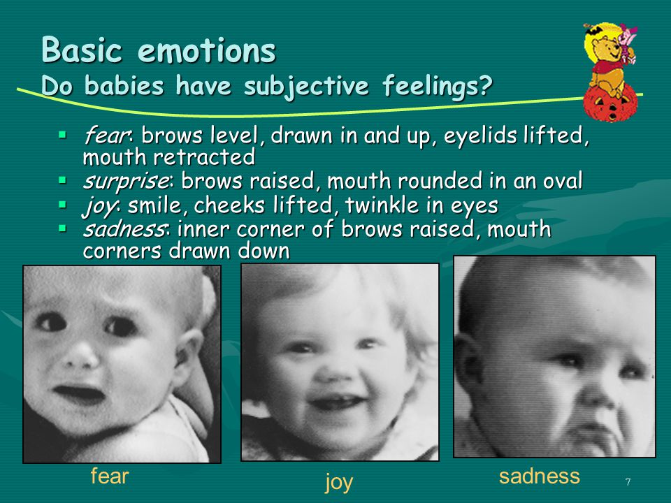 Basic emotions Do babies have subjective feelings