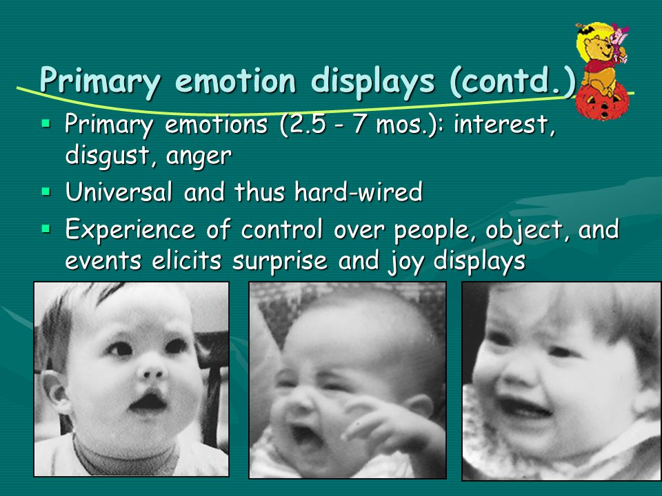 Primary emotion displays (contd.)