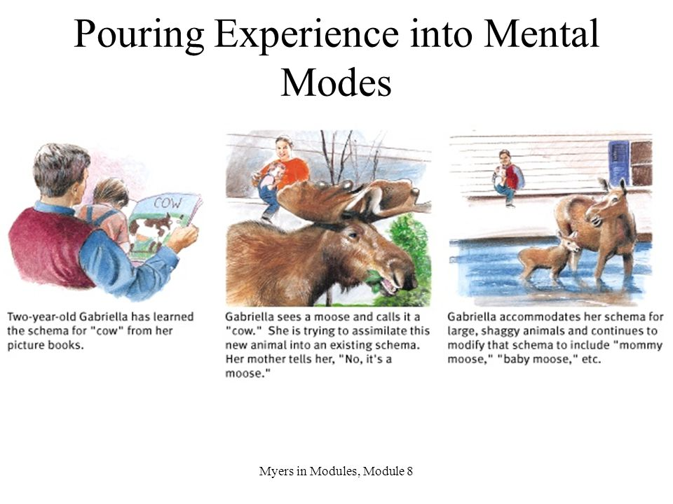 Pouring Experience into Mental Modes