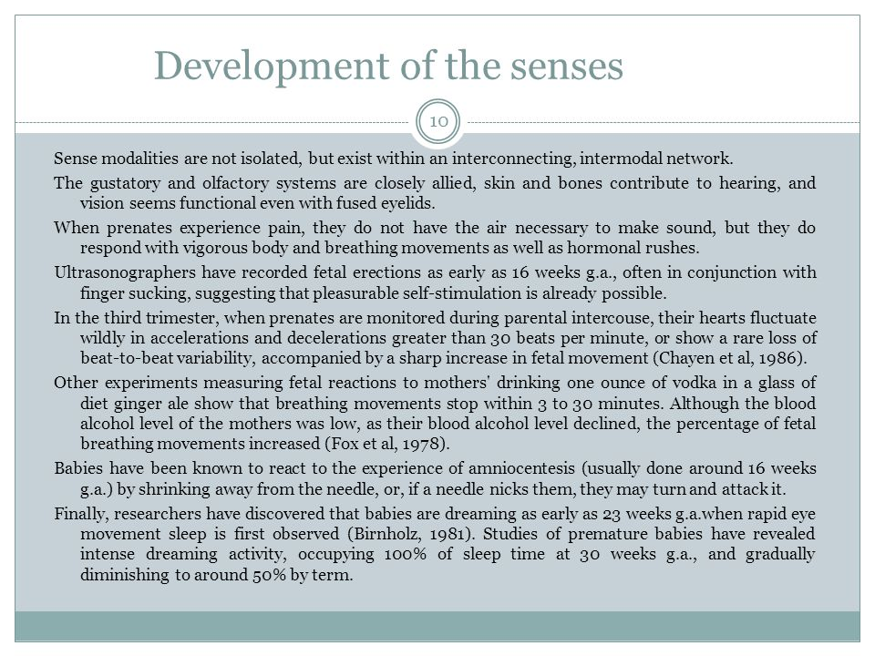 Development of the senses