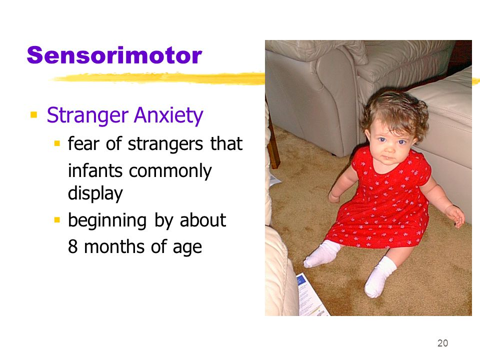 Sensorimotor Stranger Anxiety fear of strangers that