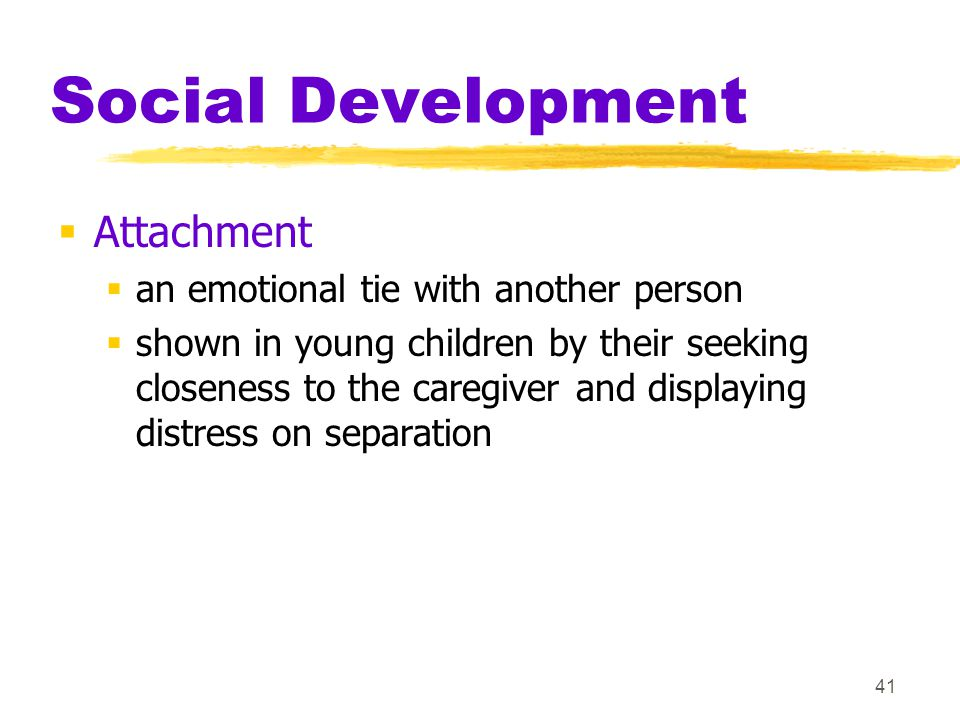 Social Development Attachment
