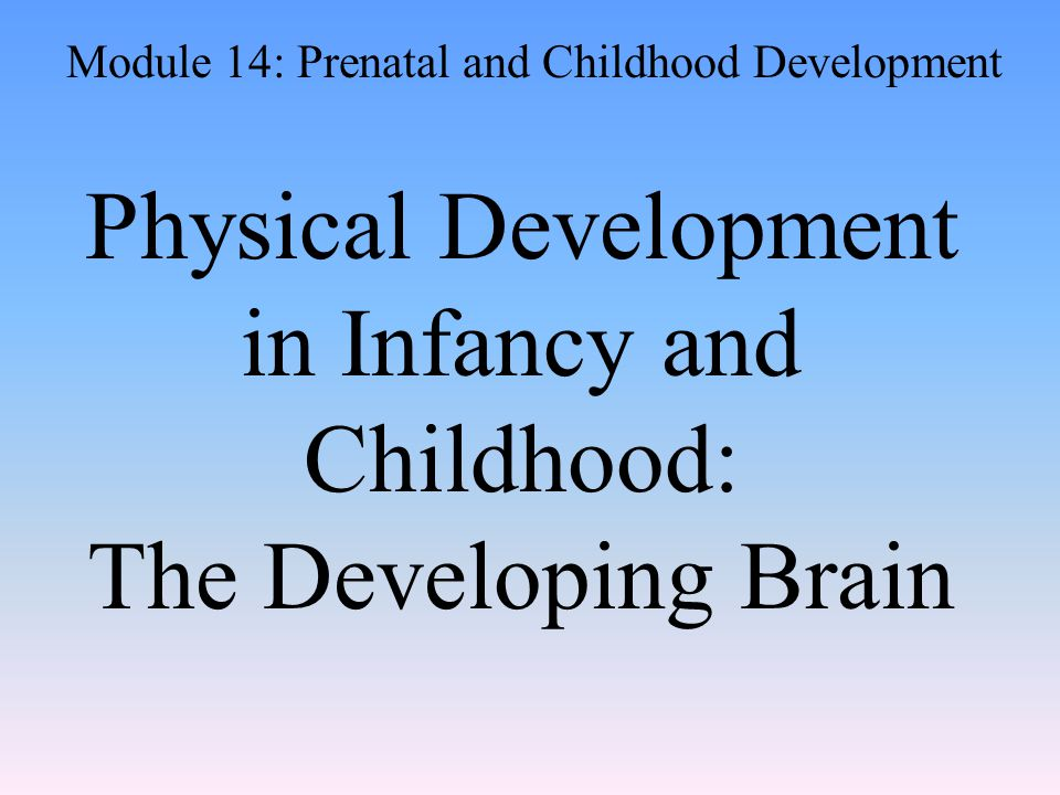 Physical Development in Infancy and Childhood: The Developing Brain