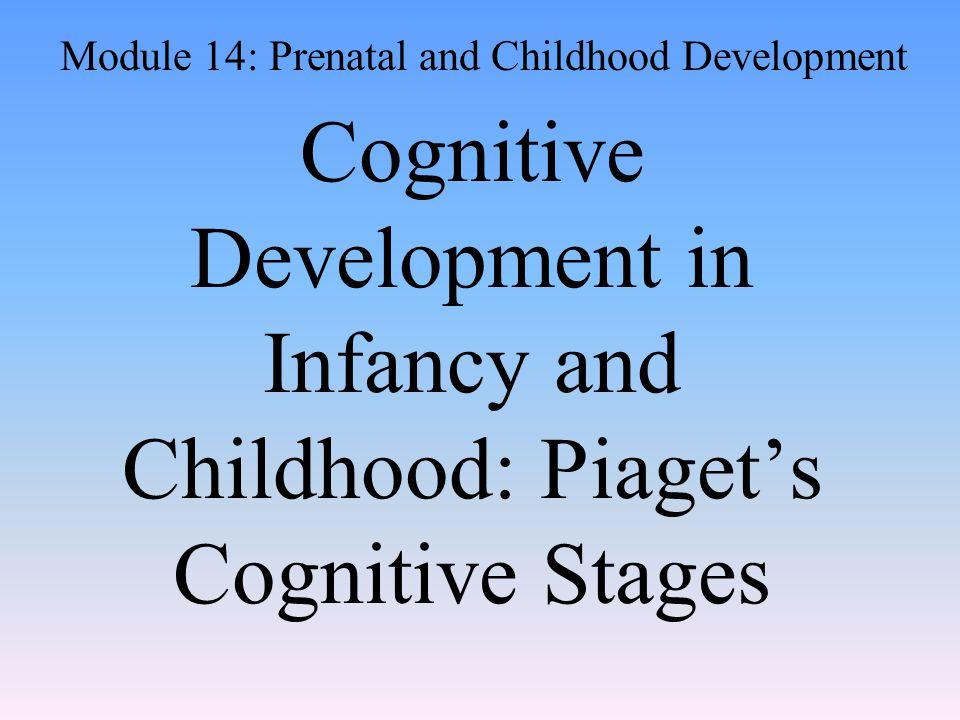 Module 14: Prenatal and Childhood Development
