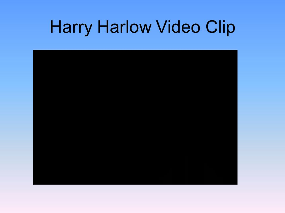 Harry Harlow Video Clip