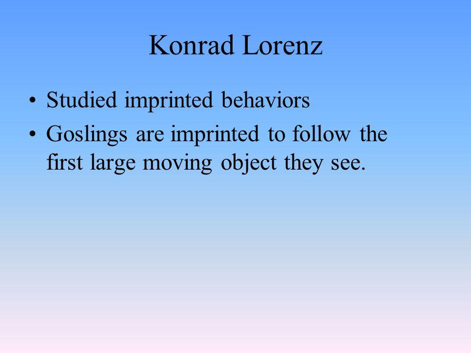 Konrad Lorenz Studied imprinted behaviors