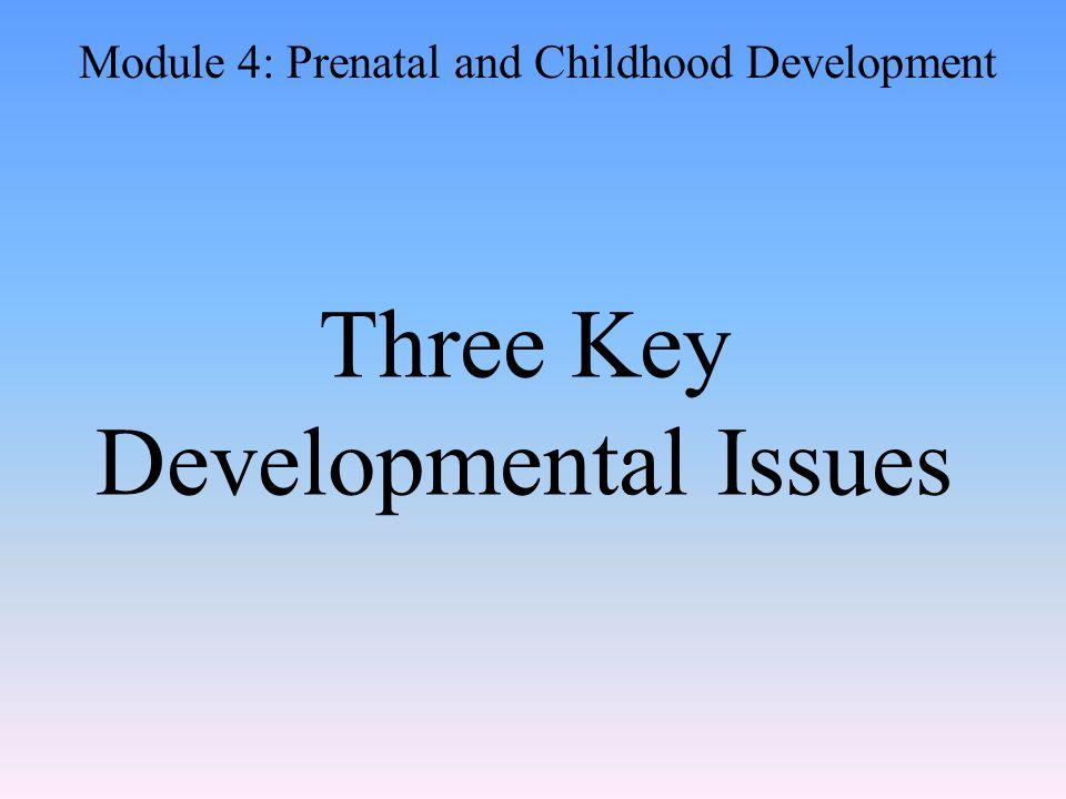 Three Key Developmental Issues