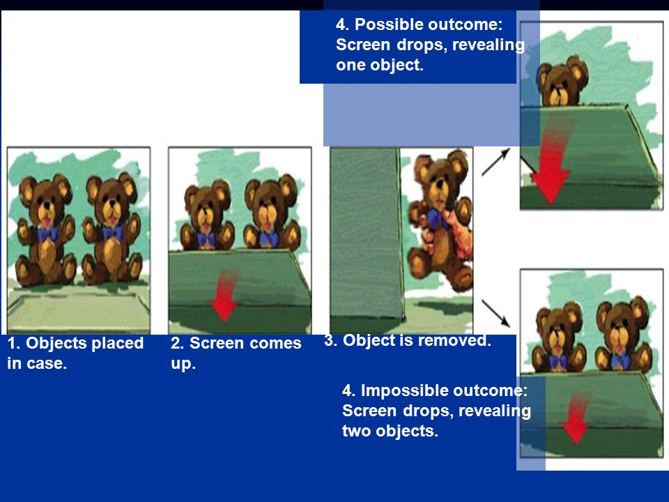 1. Objects placed in case. 2. Screen comes. up. 3. Object is removed. 4. Impossible outcome: Screen drops, revealing.