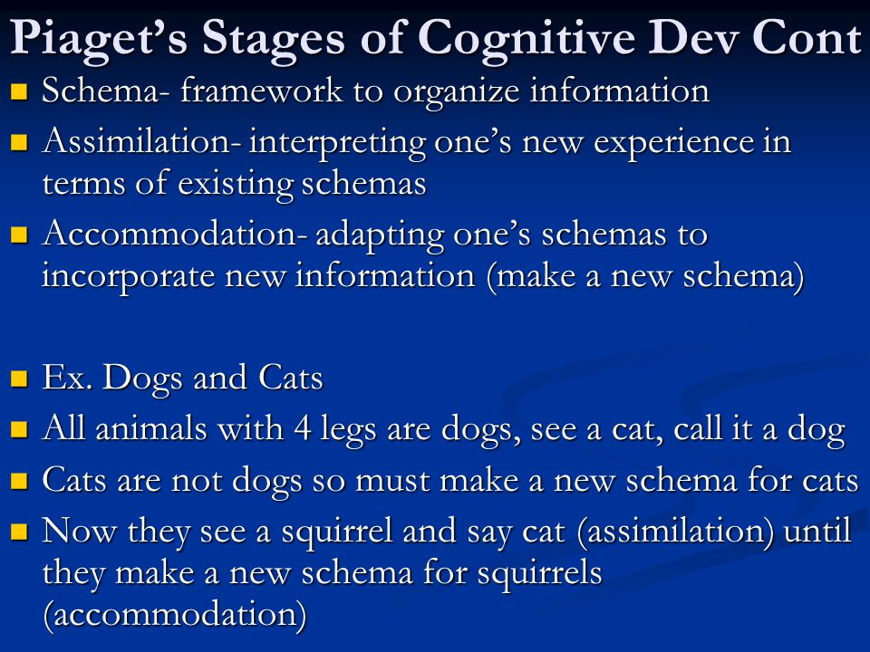 Piaget's Stages of Cognitive Dev Cont