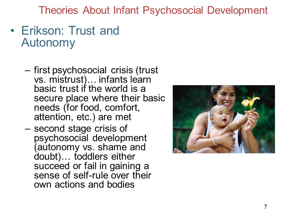 Theories About Infant Psychosocial Development