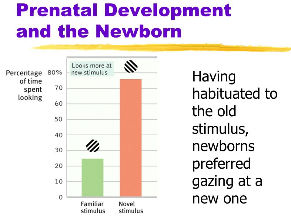 Prenatal Development and the Newborn