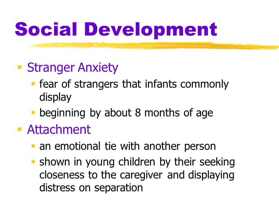 Social Development Stranger Anxiety Attachment