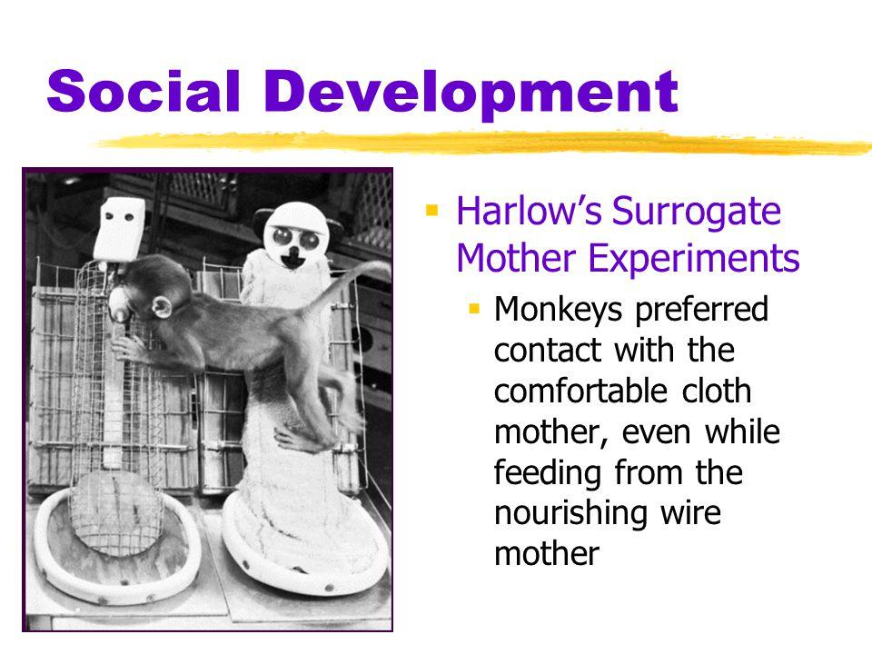 Social Development Harlow's Surrogate Mother Experiments