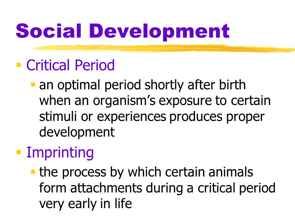 Social Development Critical Period Imprinting