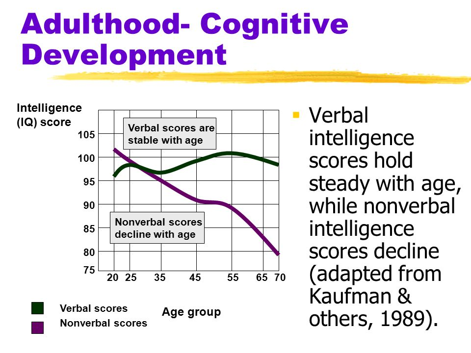 Adulthood- Cognitive Development