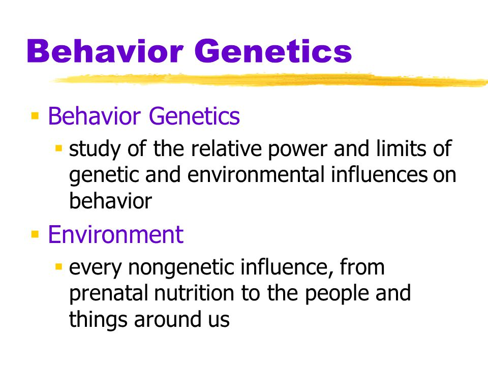 Behavior Genetics Behavior Genetics Environment