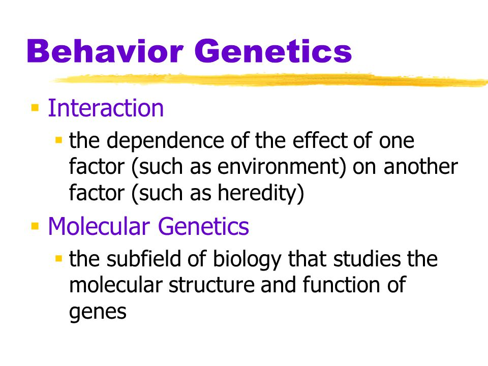 Behavior Genetics Interaction Molecular Genetics