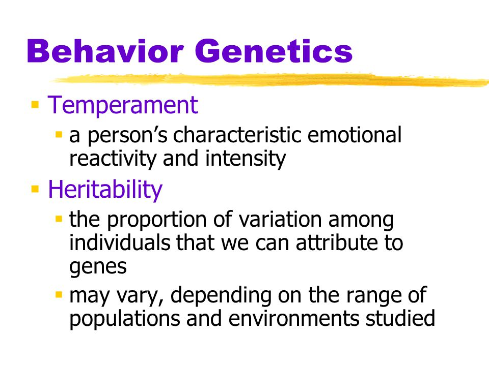 Behavior Genetics Temperament Heritability