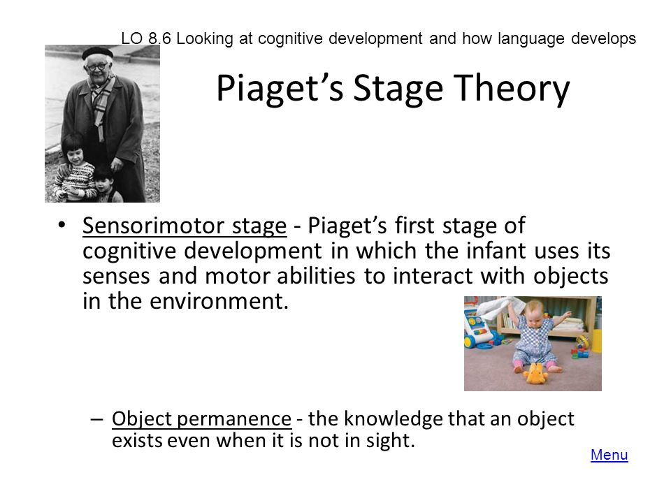 LO 8.6 Looking at cognitive development and how language develops