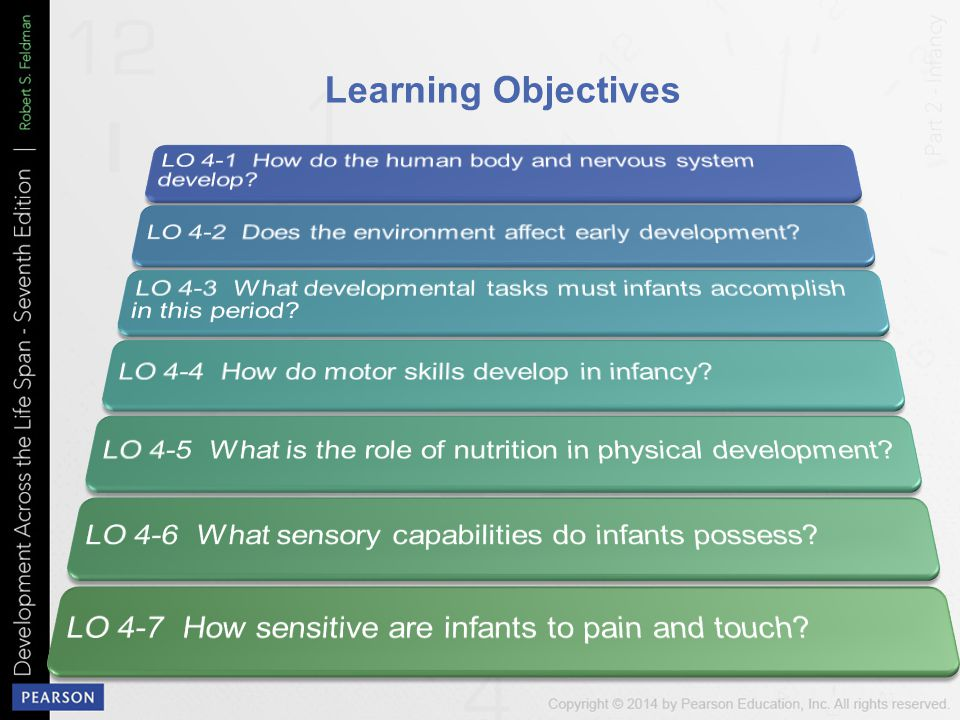 LO 4-1 How do the human body and nervous system develop