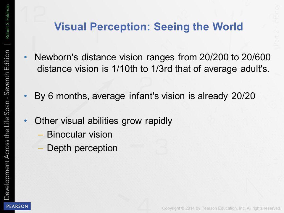 Visual Perception: Seeing the World