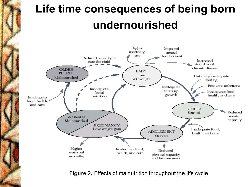 Life time consequences of being born undernourished