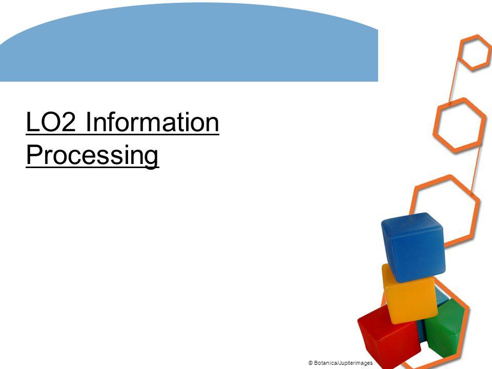 LO2 Information Processing
