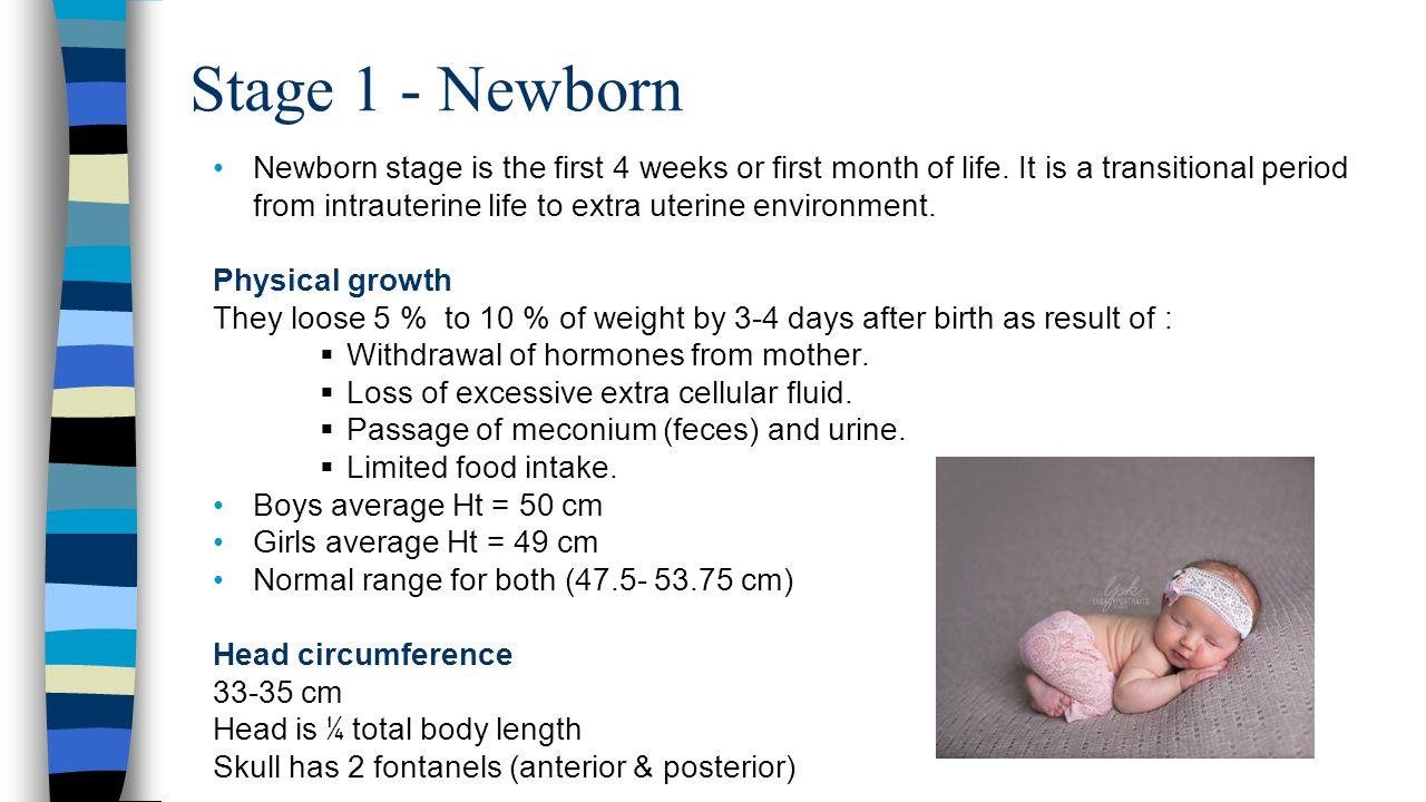 Stage 1 - Newborn