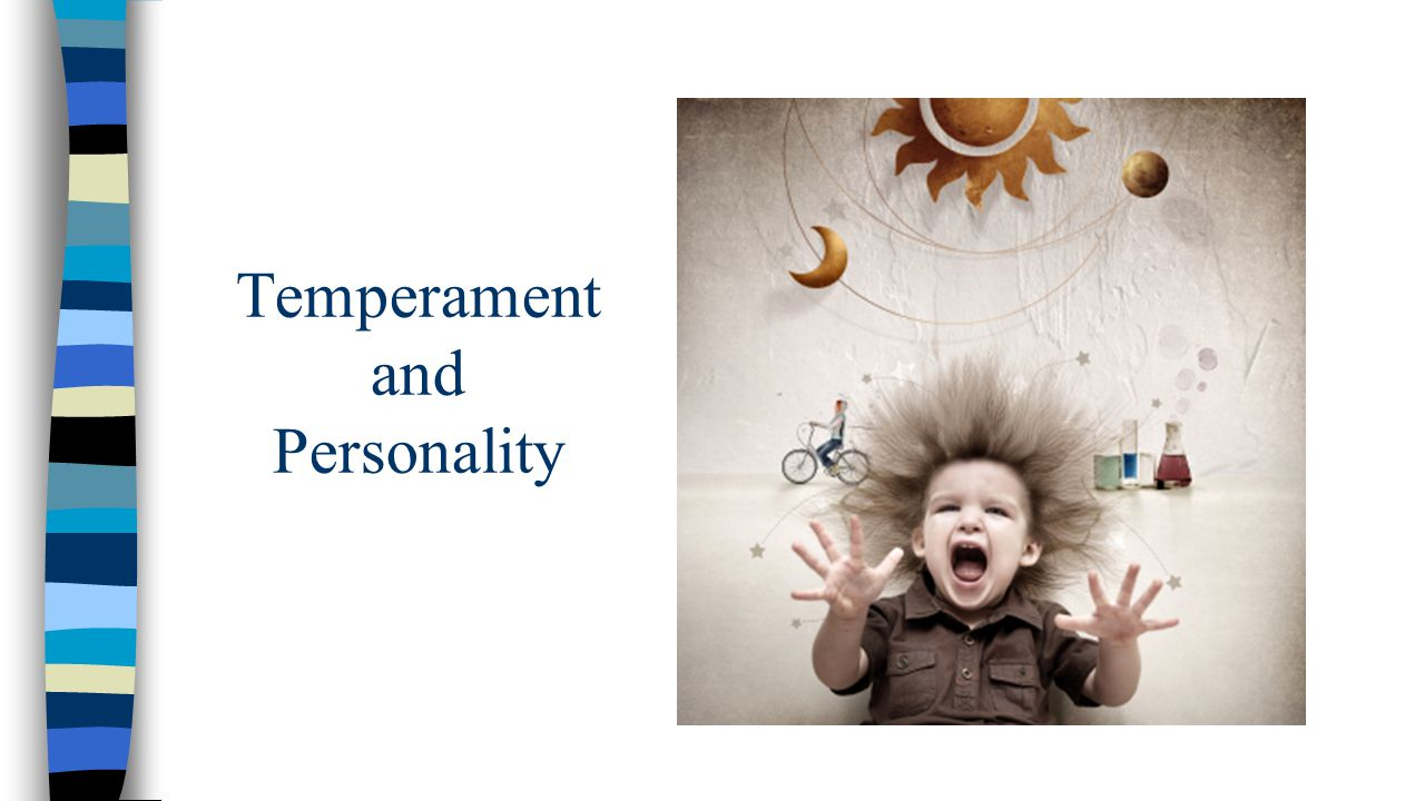 Temperament and Personality