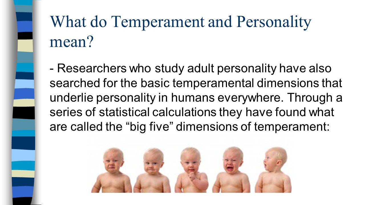 What do Temperament and Personality mean