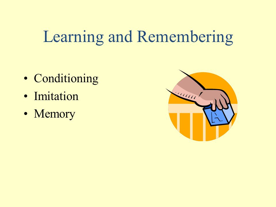 Learning and Remembering