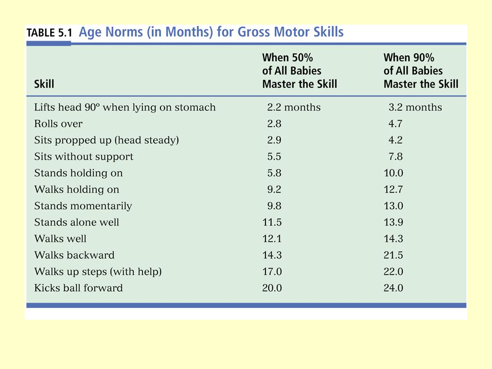 Motor Development Reflexes Gross and fine motor skills