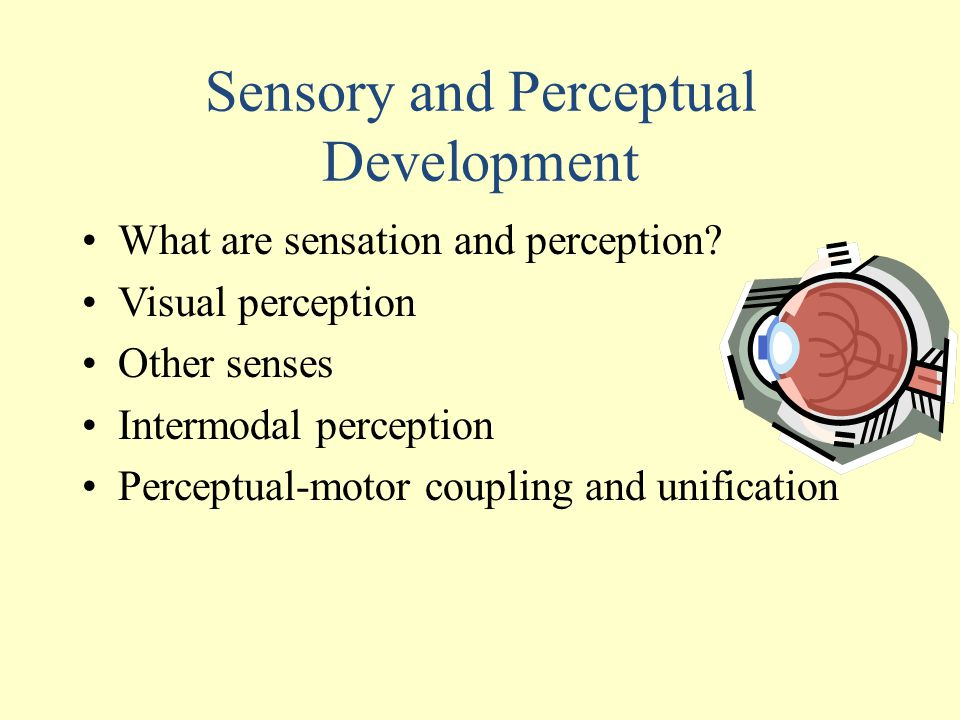 Sensory and Perceptual Development