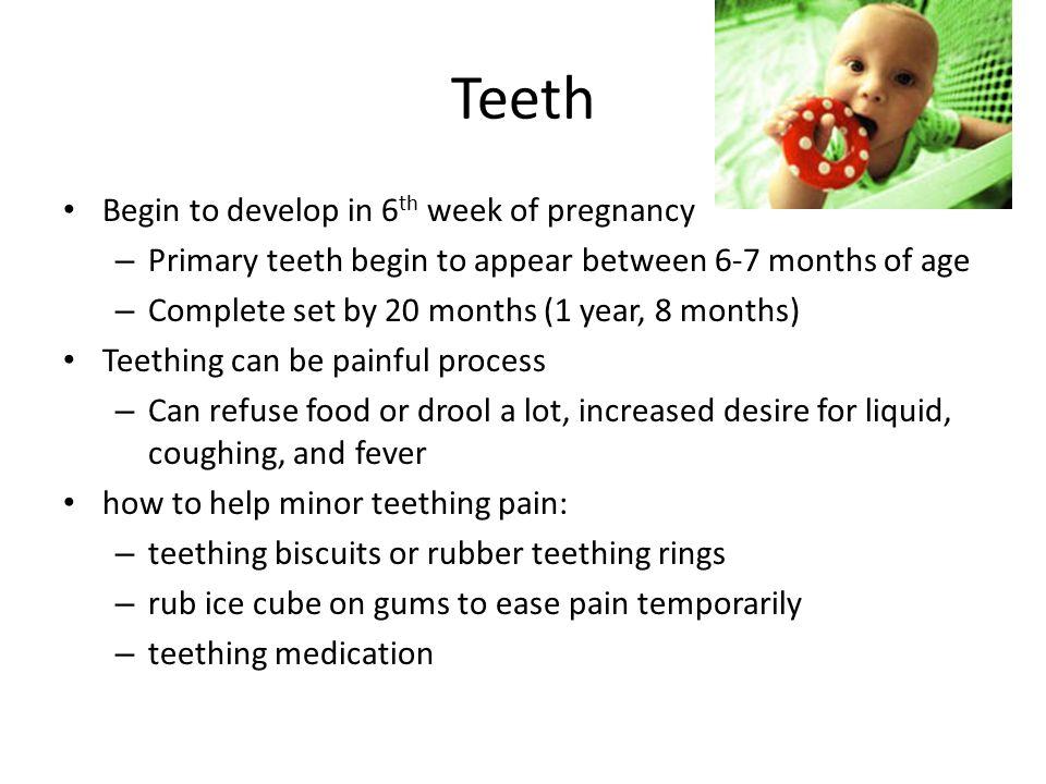 Teeth Begin to develop in 6th week of pregnancy