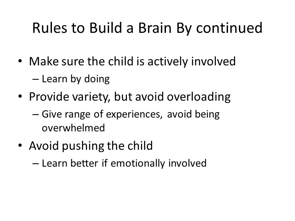 Rules to Build a Brain By continued
