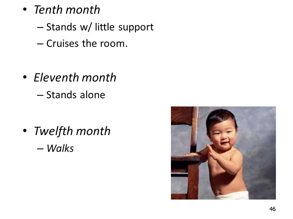 Tenth month Eleventh month Twelfth month Stands w/ little support