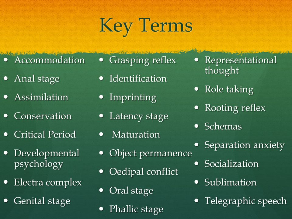 Key Terms Accommodation Grasping reflex Representational thought