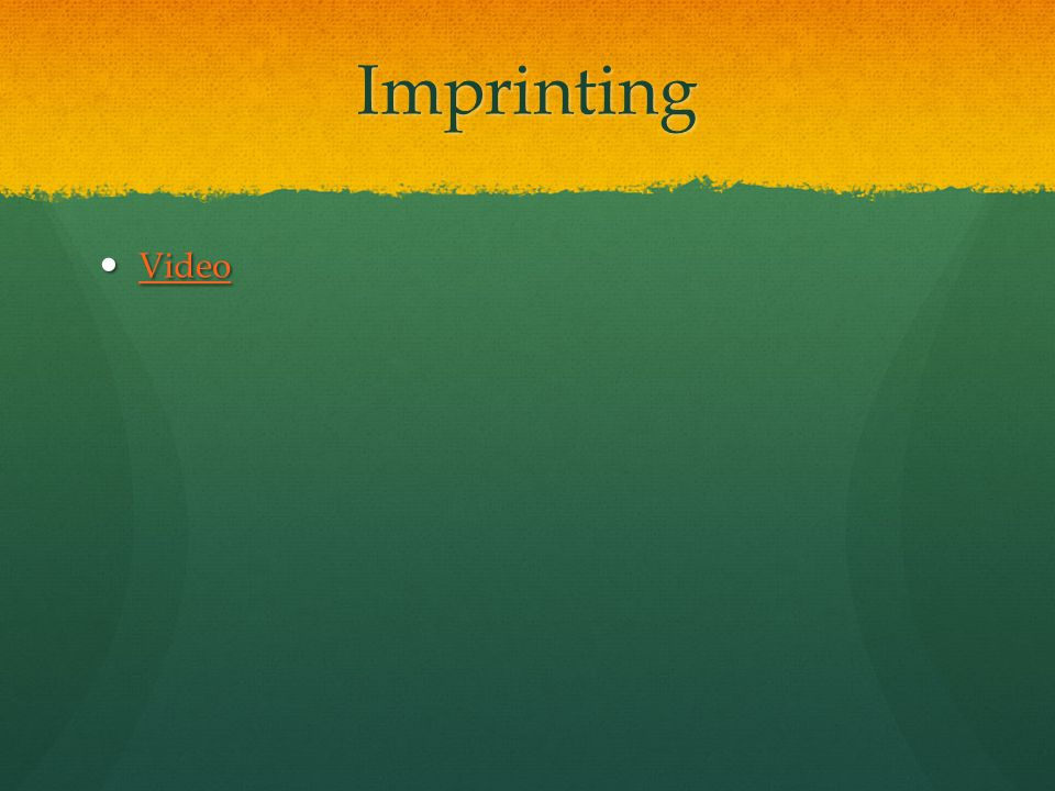 Imprinting Video