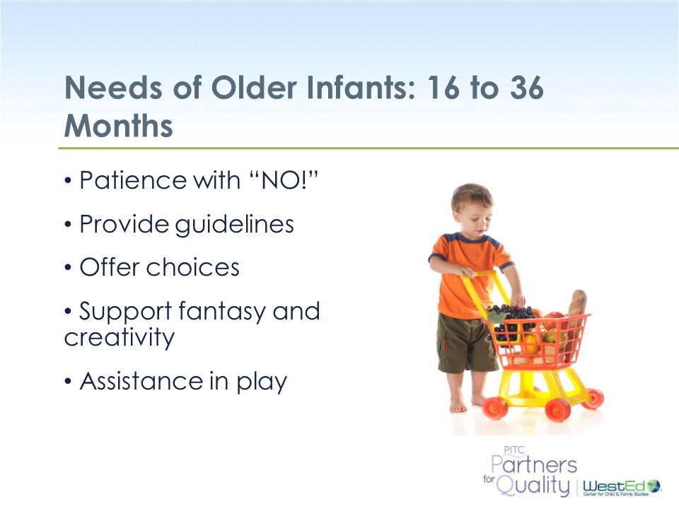 Needs of Older Infants: 16 to 36 Months