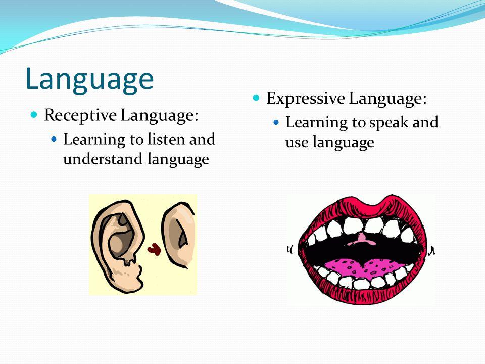 Language Expressive Language: Receptive Language: