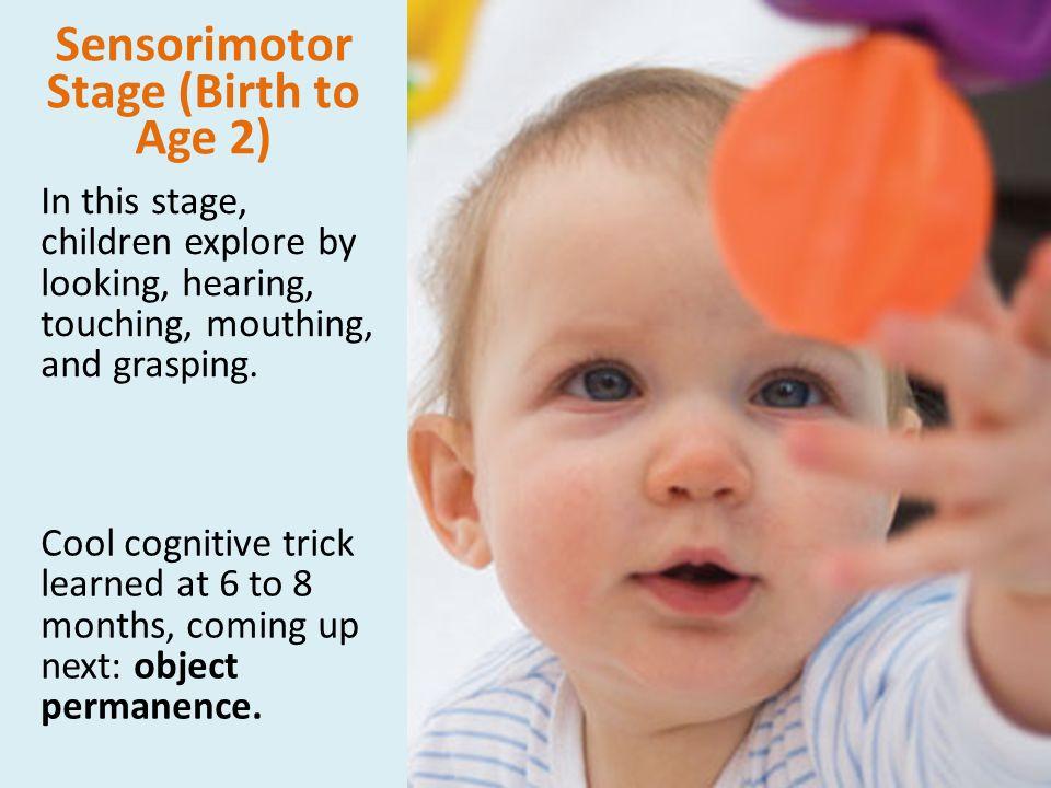 Sensorimotor Stage (Birth to Age 2)