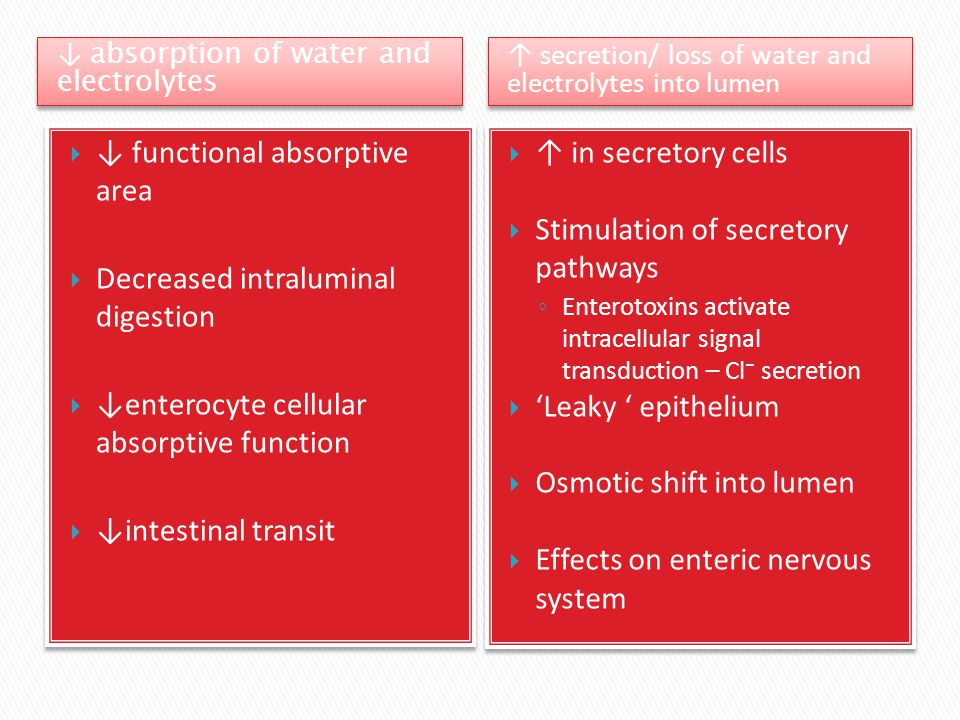 ↓ functional absorptive area