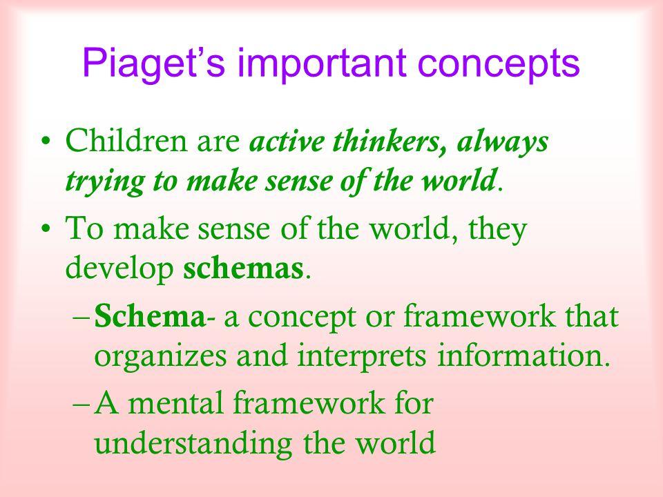 Piaget's important concepts