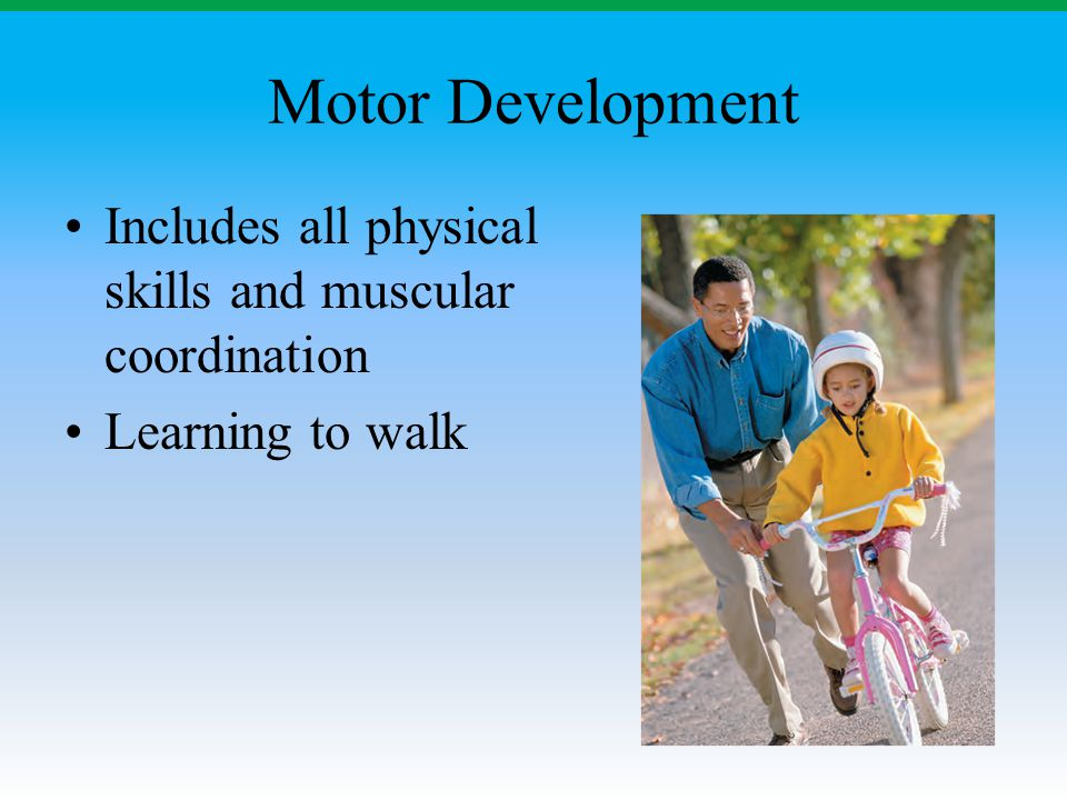 Motor Development Includes all physical skills and muscular coordination.