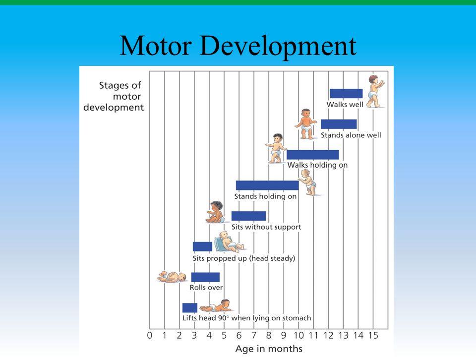 Motor Development