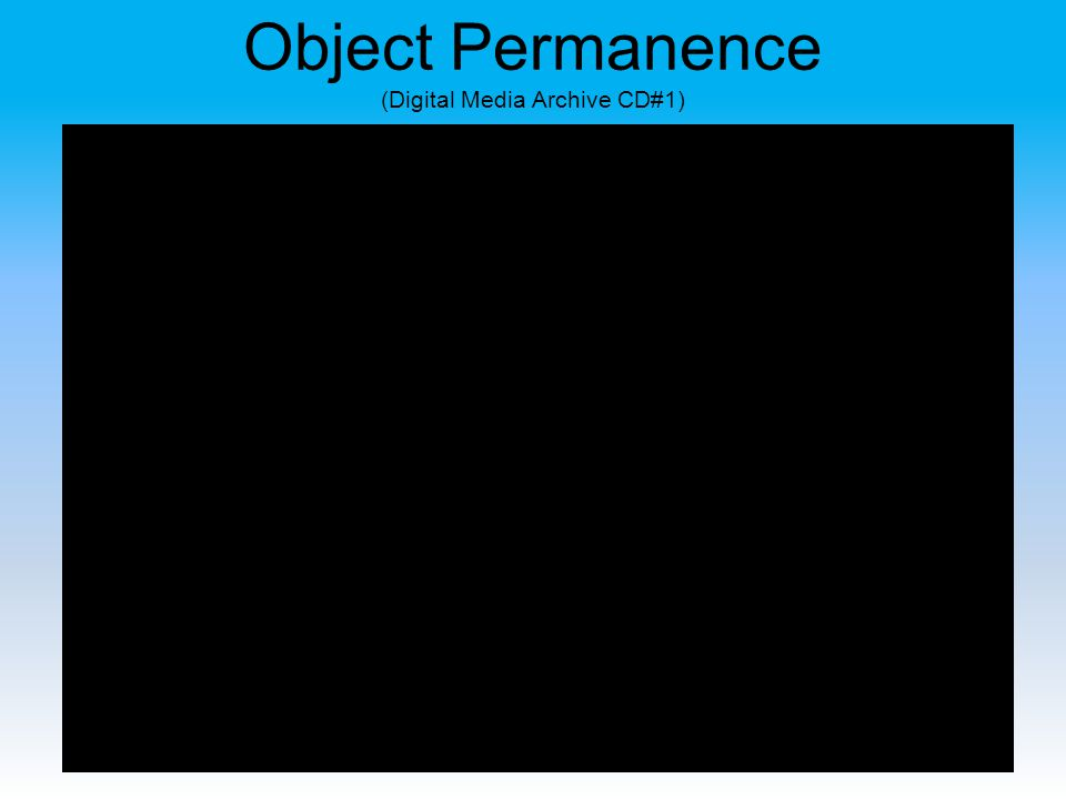 Object Permanence (Digital Media Archive CD#1)