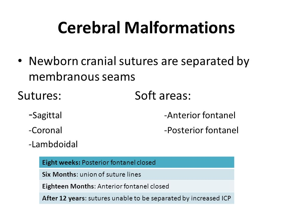 Cerebral Malformations