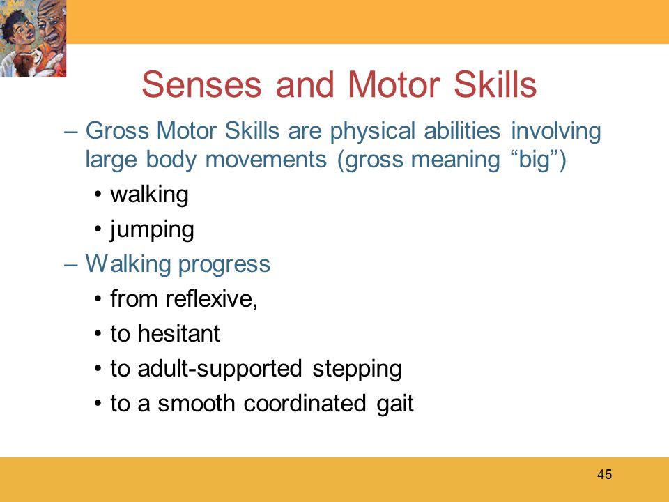 Senses and Motor Skills