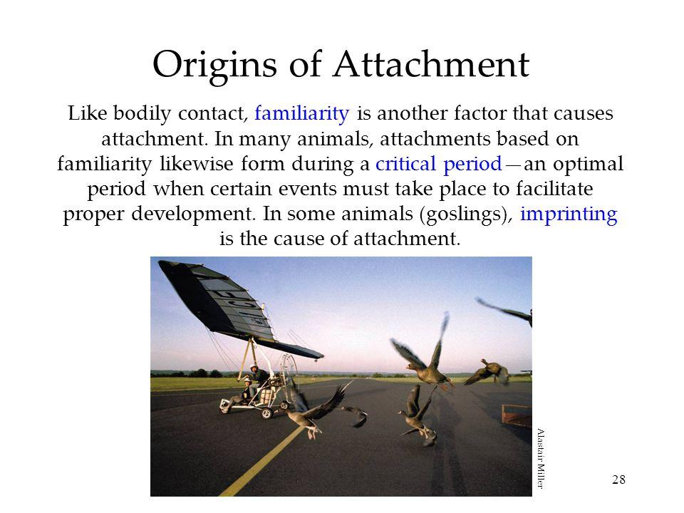 Origins of Attachment