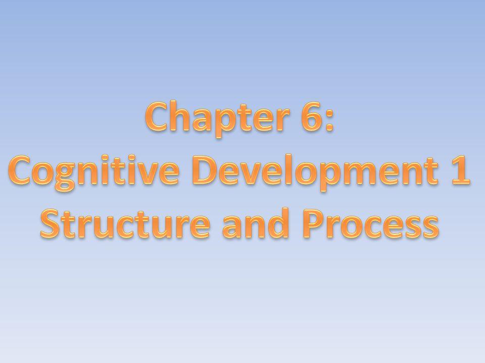 Cognitive Development 1
